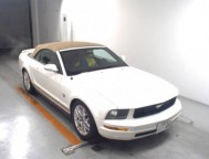 Used Ford MUSTANG Convertible 18VHT84N (2010)