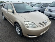 Used Toyota Allex HatchBack UA-NZE124 (2003)