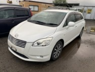 Used Toyota Mark X ZiO STATION WAGON DBA-ANA10 (2007)