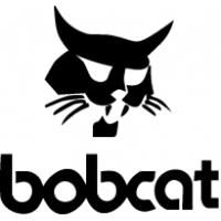 bob-cat.png